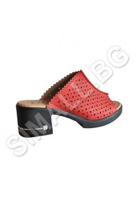 Дамски чехли в 4 цвята
