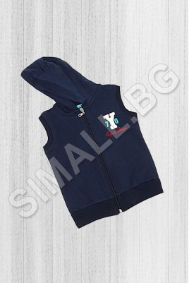 Sweatshirt sleeveless boys from 2 to 9 years 3 colors